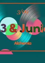 BUG 313 vs. Junior H2O @Alchemia