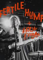 Fertile Hump i  Hiob Dylan